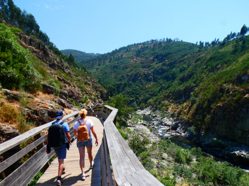 Tourists walking on the Passadiços do Paiva, on a sunny day, overlooking the valley of the Paiva River. Guided tour